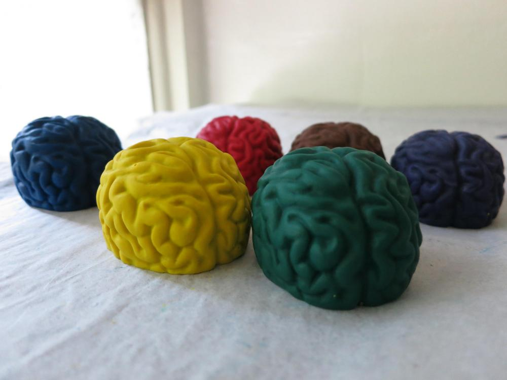 Large Brains Crayon Set of 6